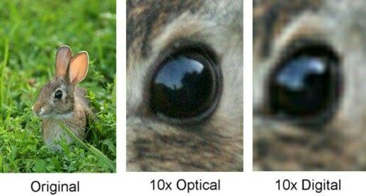 optical vs digital zoom.jpg